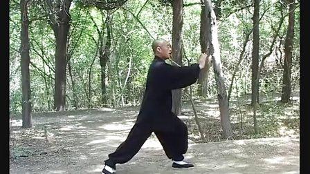 (北京新版)正宗杨式太极拳85式教学精解 (二)永年李占英