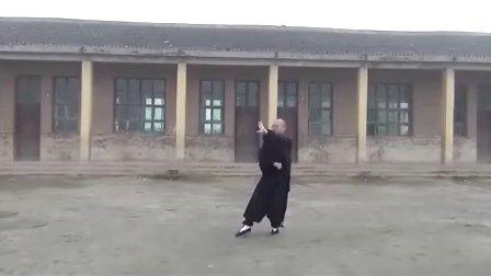 (新版)杨式太极拳85式全套背向演练   永年李占英