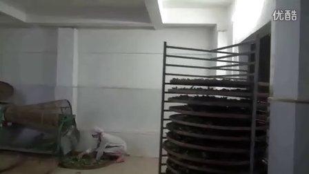 有机茶(宝坛香茶)加工(鲜叶摇青分级)