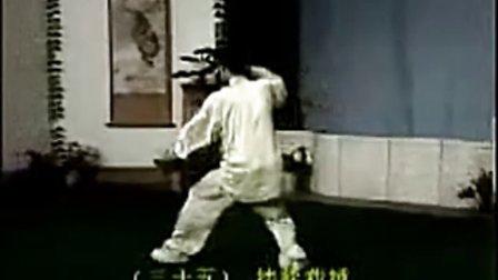 杨式88式太极拳