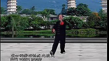 40式杨氏太极拳竞赛套路教学全集