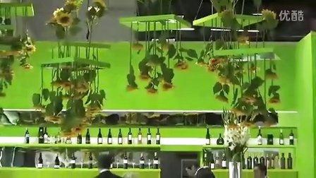 2011年Vinexpo波尔多回顾 Présentation Vinexpo 2011