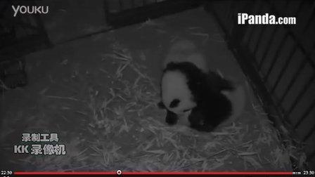 20131215奥莉奥和园润的第一次亲密接触(30秒清晰版)