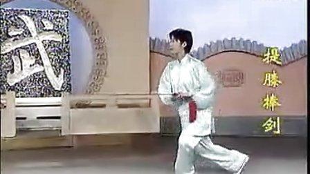 32式太极剑 (正面演练) 标清