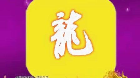 欢天喜地礼仪公司片头2012