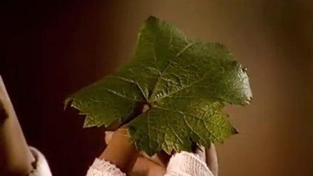 【丽菲美酒课堂——电影教你葡萄酒5】《流星花园2》 道明寺品酒