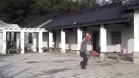 温州洞头县武术协会 杨氏太极十三刀