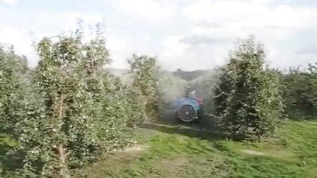 V系列喷药机  果园弥雾机