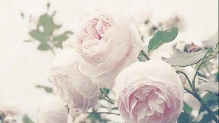 花朵是如此美丽-----临沂中医院美容科