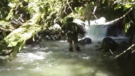 新西兰打工旅行 - 和猎人在雨林里冒险