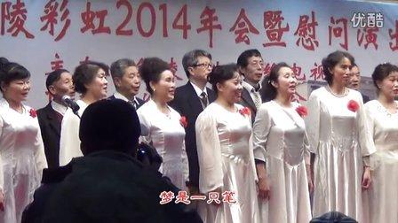 彩虹之声艺术团演出—合唱《最美老人梦》等