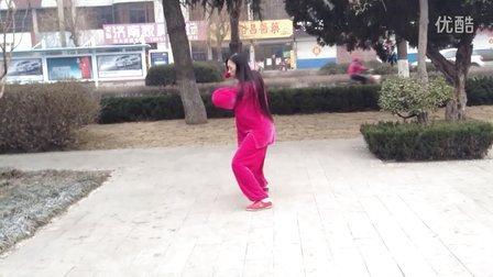 陈氏太极拳二路