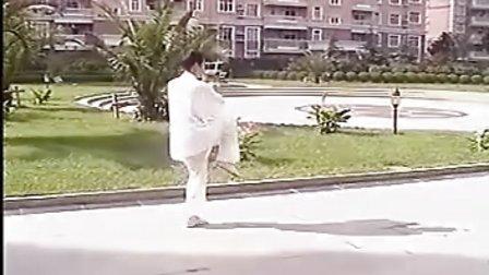 杨氏85式太极拳 徐晓明