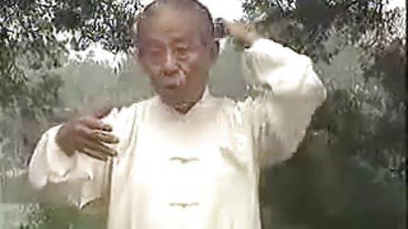 王培生实用小功法B_标清