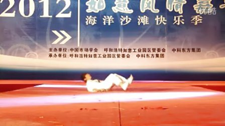 北京中华武术表演  北京武术表演  北京武术演出