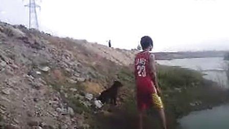 MOV_陈浩然和游泳的狗狗