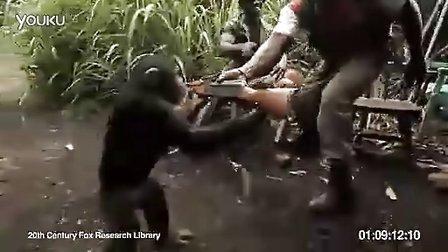 手持AK47的猩猩你伤不起 ,有木有