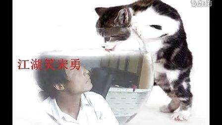 最新江湖笑上映