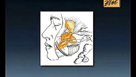 整形外科学视频140 105 第一百零五集 头面部大体结构及局部分区