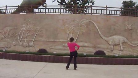 广场舞 最美最美