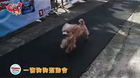 一寵狗狗奧運會(NON CANNED MUSIC)