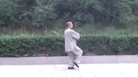 正宗杨式太极拳教学(精讲九)  永年李占英