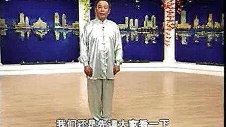 48式杨氏太极拳精讲(带演练) 下