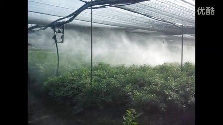 恩宝苗圃与温室喷药机