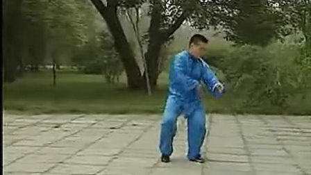 56式陈氏太极拳_整套演练