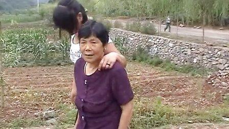 陕西丹凤县保定村