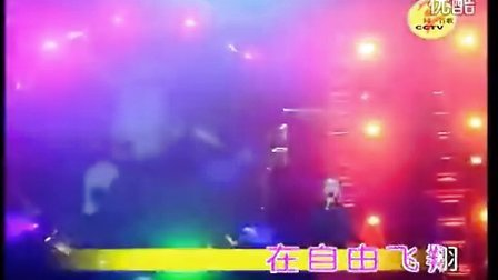 白兰鸽_萧民