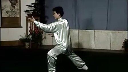 40式杨氏太极拳 (正面演练)