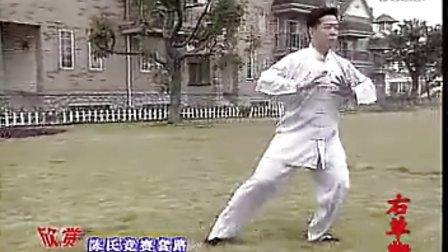 带字幕陈氏56式太极拳 演练