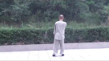 2012年精品 正宗杨式太极拳教学(精讲七)  永年李占英