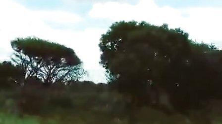 140208.誉恩上传南非录制节目途中景象