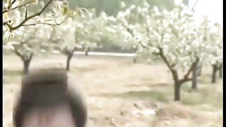达摩祖师 07(祝福东土QQ2209981400)
