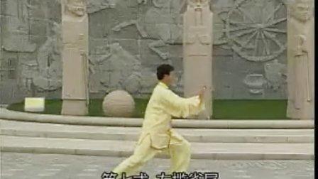 24式杨氏太极拳正面整套演练