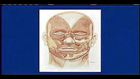 整形外科学视频140 133 第一百三十三集 中面部提升(十)