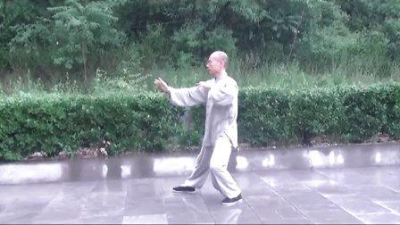 正宗杨式太极拳教学(精讲十一)  永年李占英