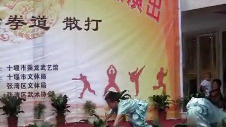 武术表演1