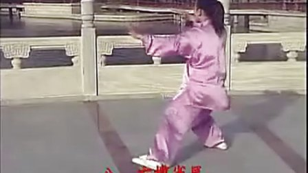 带字幕杨氏24式太极拳 背练