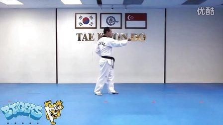 【太极一章】庆熙跆拳道黑带七段品势动作分解示范【教学视频】