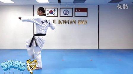 【太极四章】庆熙跆拳道黑带七段品势动作分解示范【教学视频】
