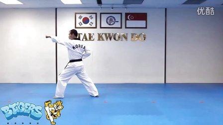 【太极二章】庆熙跆拳道黑带七段品势动作分解示范【教学视频】
