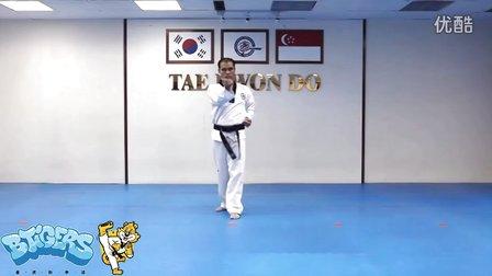 【太极三章】庆熙跆拳道黑带七段品势动作分解示范【教学视频】