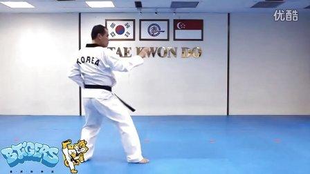 【太极五章】庆熙跆拳道黑带七段品势动作分解示范【教学视频】
