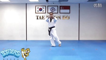 【太极六章】庆熙跆拳道黑带七段品势动作分解示范【教学视频】