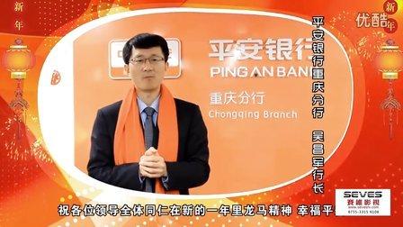 深圳企业宣传片-2013平安银行大事记-深圳赛维影视
