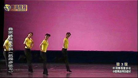 中国舞蹈家协会中国舞蹈考级第三级9彝家娃娃真幸福 标清_标清