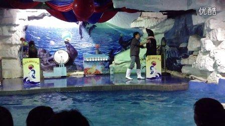 武汉东湖海洋世界(海狮表演)